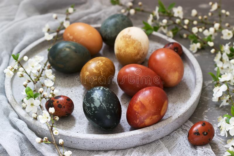 Easter eggs dyed with natural dyes, cabbage, chamomile, hibiscus and onion peel. royalty free stock photo