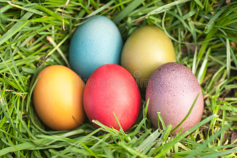 Download Easter eggs stock photo. Image of blue, green, background - 39513796