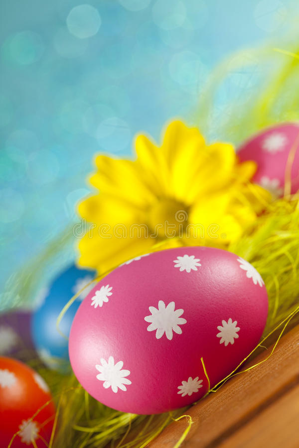 Easter eggs and flowers on blue background stock photography