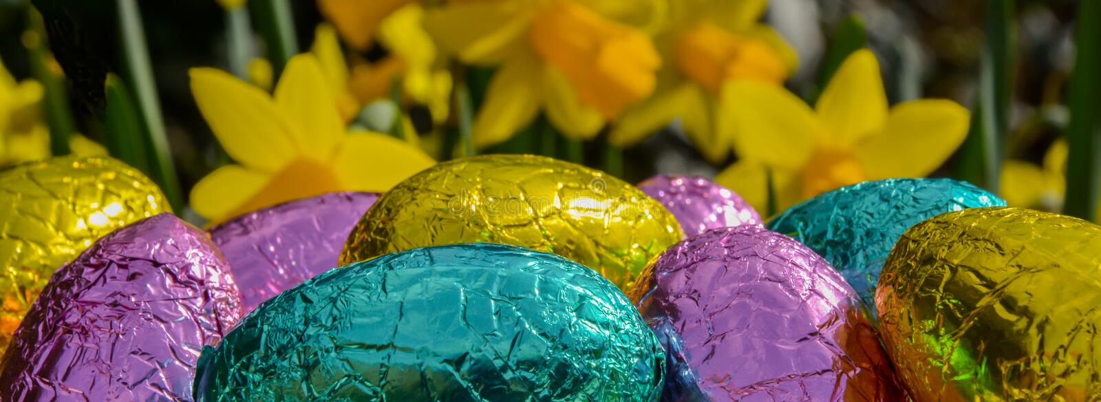 Easter Eggs. Foil Easter Eggs with a spring daffodil background stock image