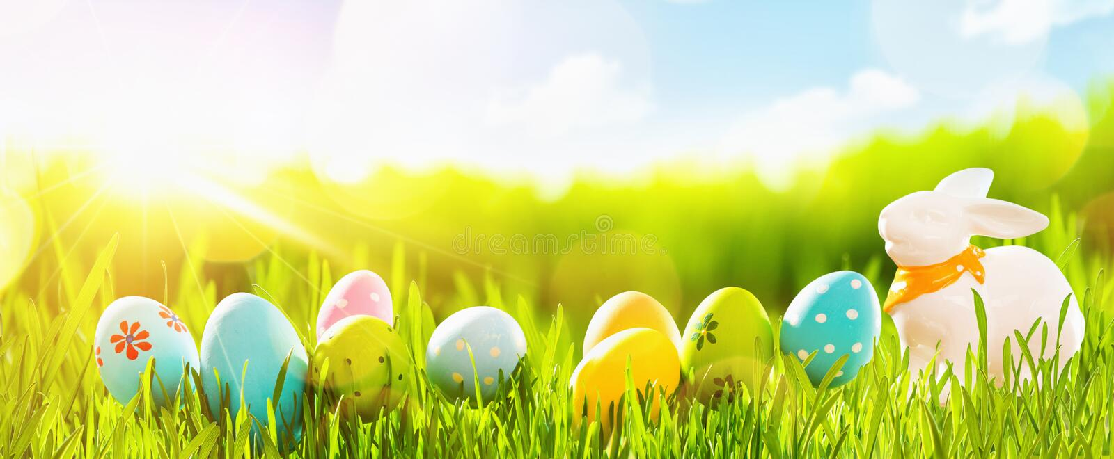 Easter Eggs With Fresh Green Grass and Sun royalty free stock images
