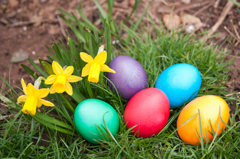 Download Easter Eggs stock photo. Image of color, close, colorful - 30035190
