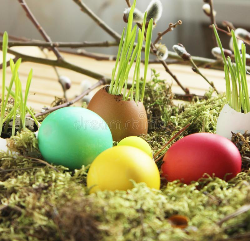 easter eggs on the grass royalty free stock images