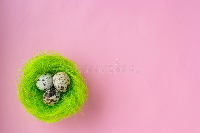 Easter eggs in green nest on pink background stock images