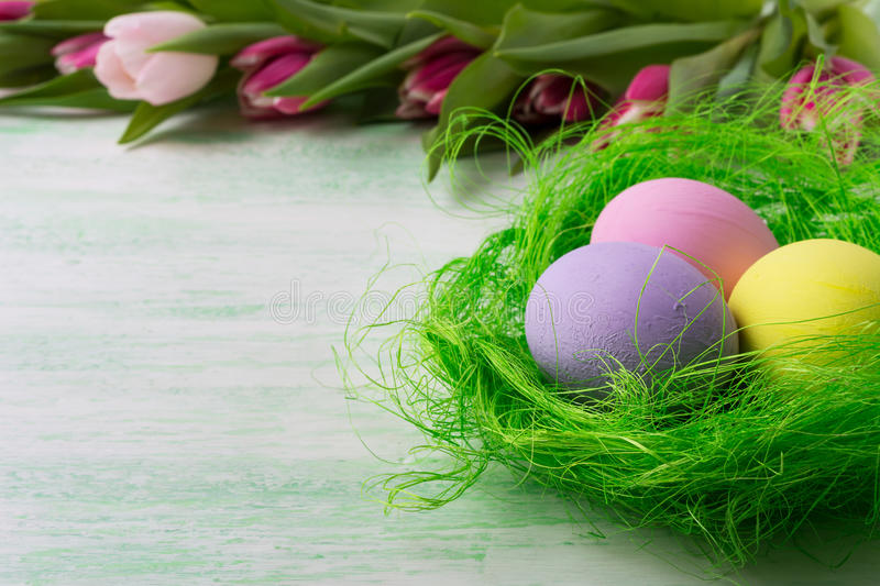 Easter eggs in green nest and tulips royalty free stock image