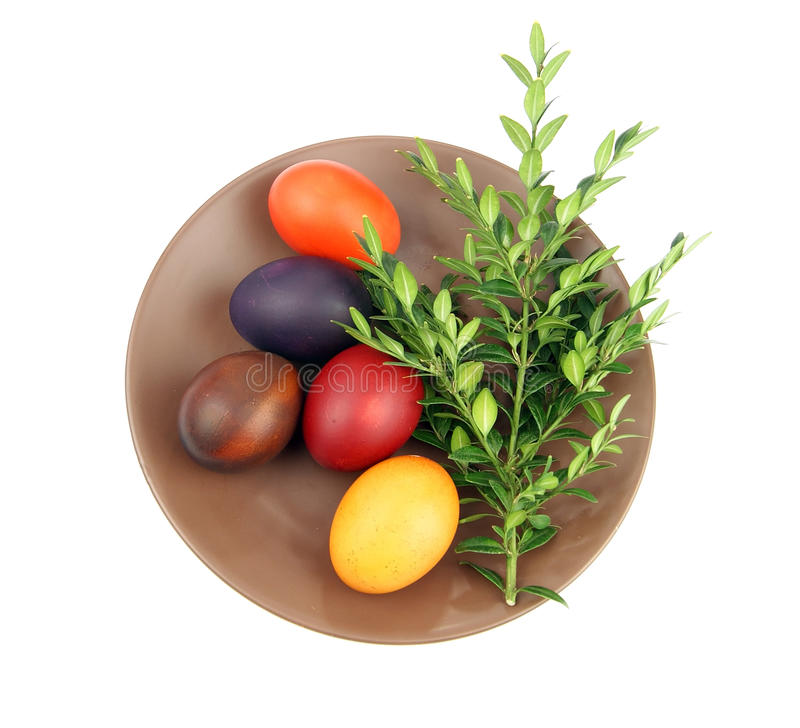 Download Easter Eggs And Green Sprig Stock Image - Image: 29913983