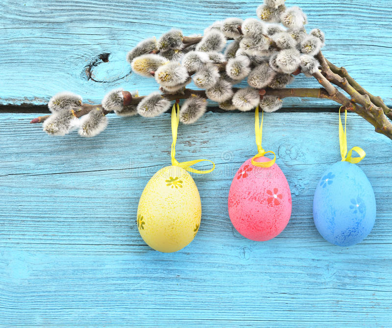 Easter eggs hanging on ribbons and pussy-willow. At a blue wooden background stock images