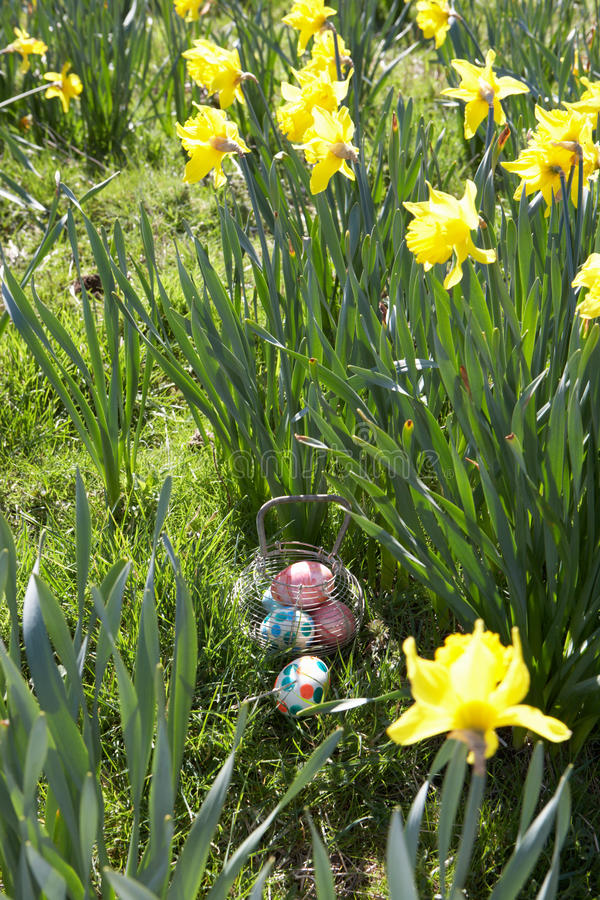 Download Easter Eggs Hidden For Hunt. Stock Image - Image: 16142867