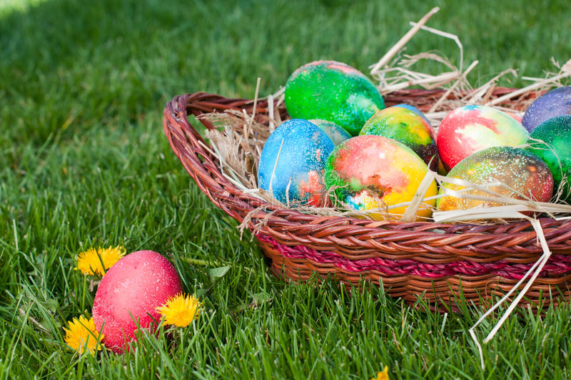 Easter Eggs Hunt Stock Images