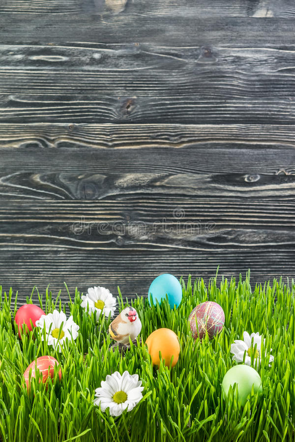 Free Easter Eggs In Grass Royalty Free Stock Photography - 65183227