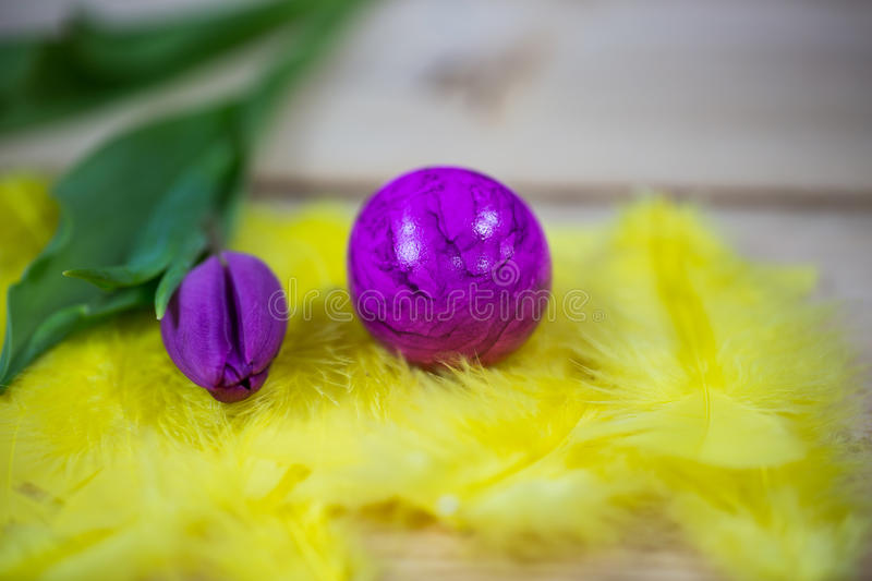 Easter eggs macro, on yellow feathers. Background royalty free stock images
