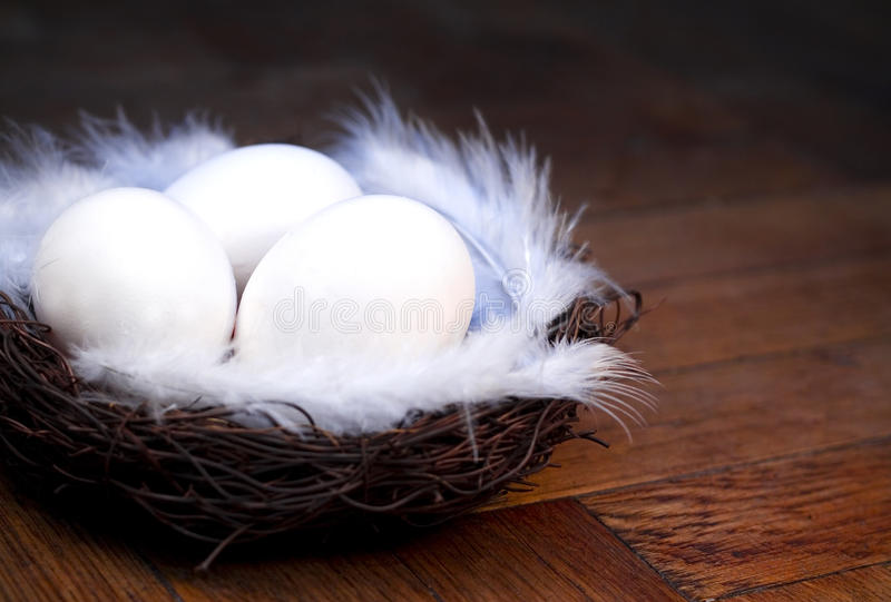 Download Easter eggs in the nest stock photo. Image of wooden - 24101462