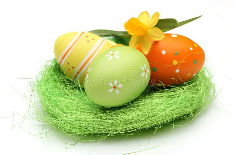 Easter eggs on nest stock photography