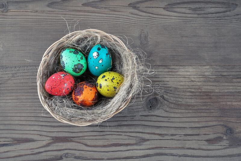 Easter eggs and nest stock photography