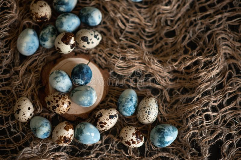 Easter eggs in nest painted by hand in blue color on dark background. Chicken and quail eggs catholic and orthodox easter holiday.  royalty free stock image