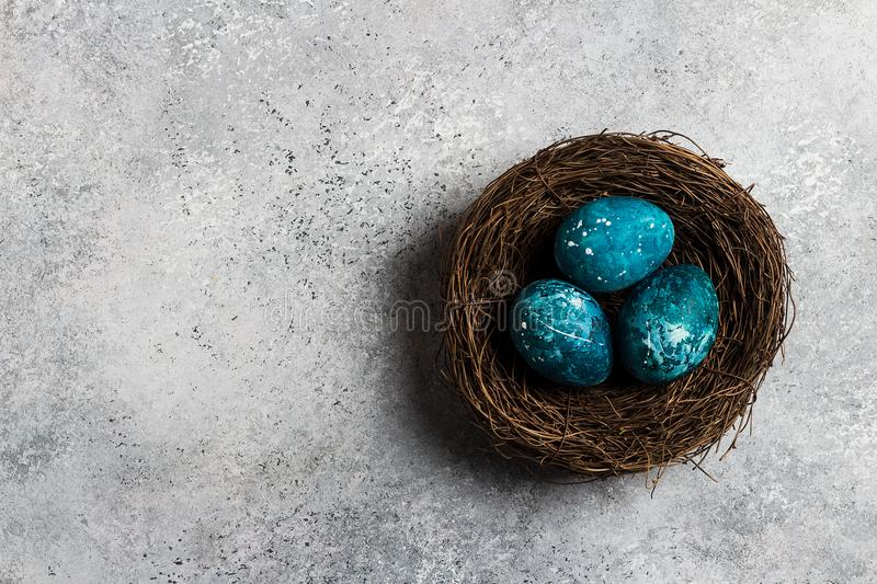 Easter eggs in nest painted by hand in blue color on light background stock image