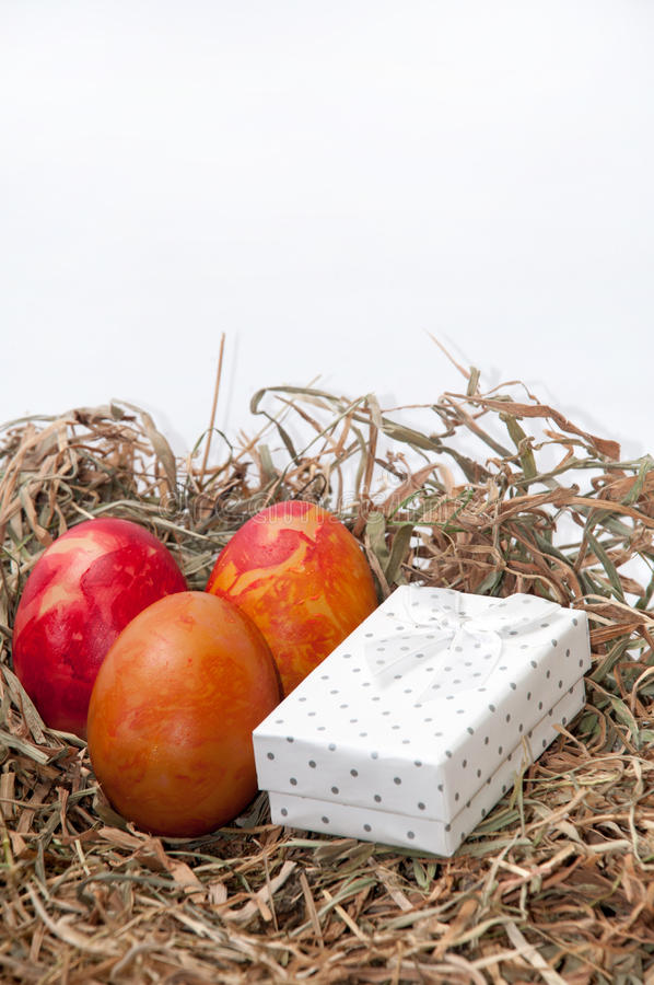 Easter eggs in the nest and white box.  royalty free stock image