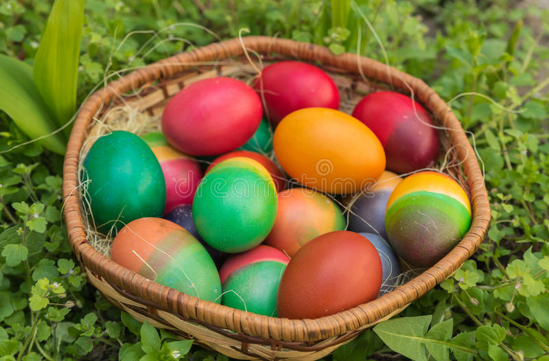 Easter eggs. Placed in a wicker basket in the grass stock photos