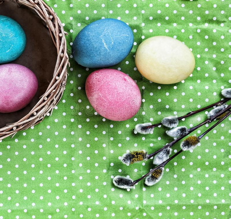 Easter eggs, willows, green background, copy space, royalty free stock photography