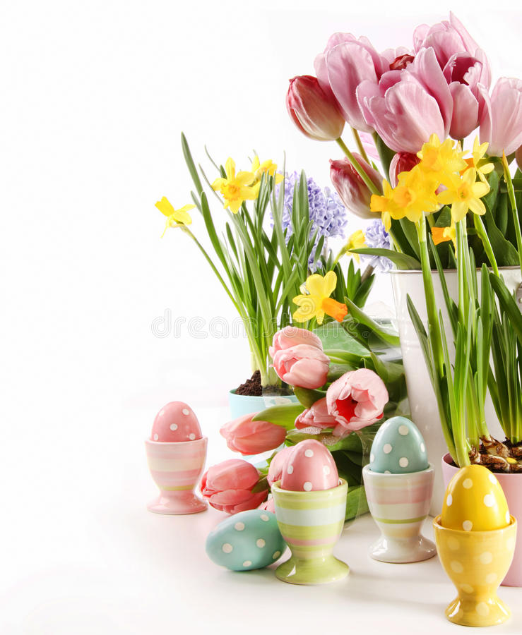 Easter eggs with spring flowers on white royalty free stock photos