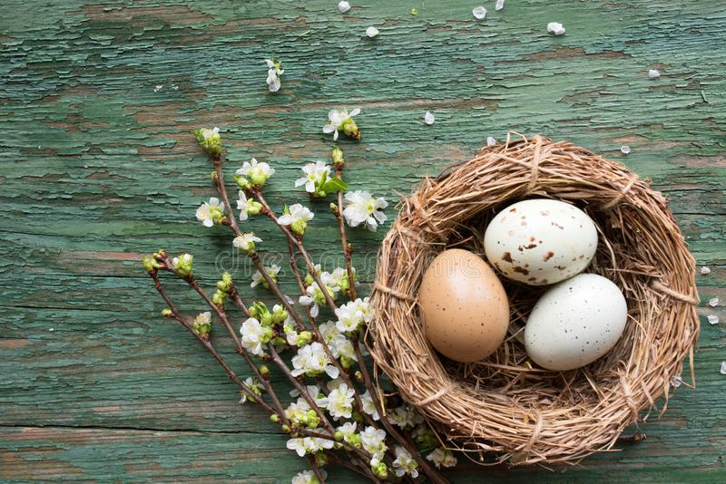 Easter eggs in straw nest on old wood stock photos