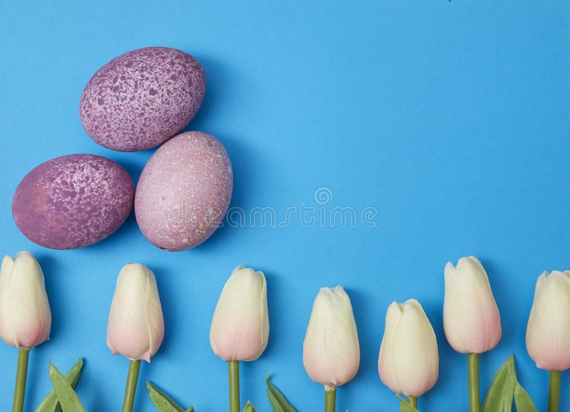 Easter eggs with tulip flower royalty free stock image