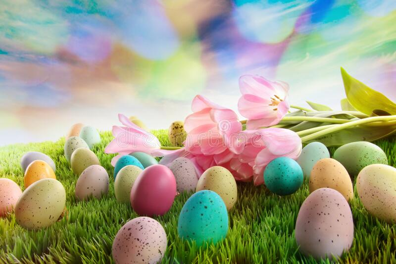 Easter eggs with tulips on grass with rainbow sky royalty free stock image