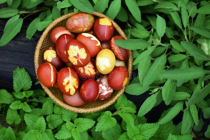 Easter eggs in vintage basket royalty free stock photo