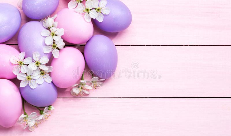 Easter eggs and  white flowers Cherry blossom  on pink wooden table stock photo