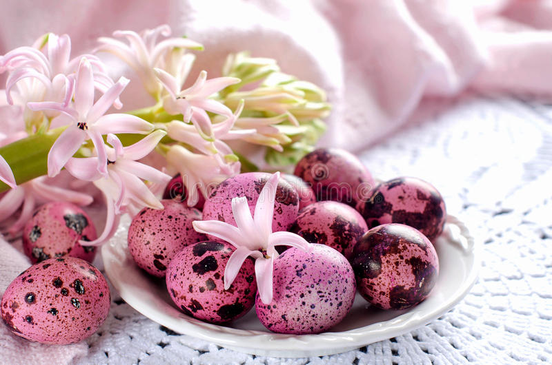 Easter eggs on a white plate and flowers of the hyacinth. Easter egg pink color. The quail eggs. The flowers are pale pink hyacinth. A white plate. Selective royalty free stock images