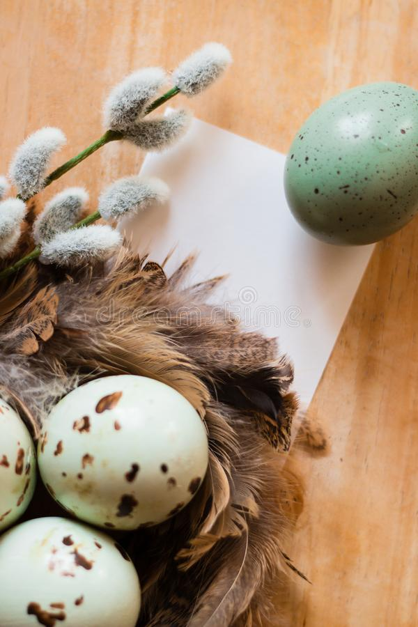 Easter eggs, willow branch and feathers` nest stock images