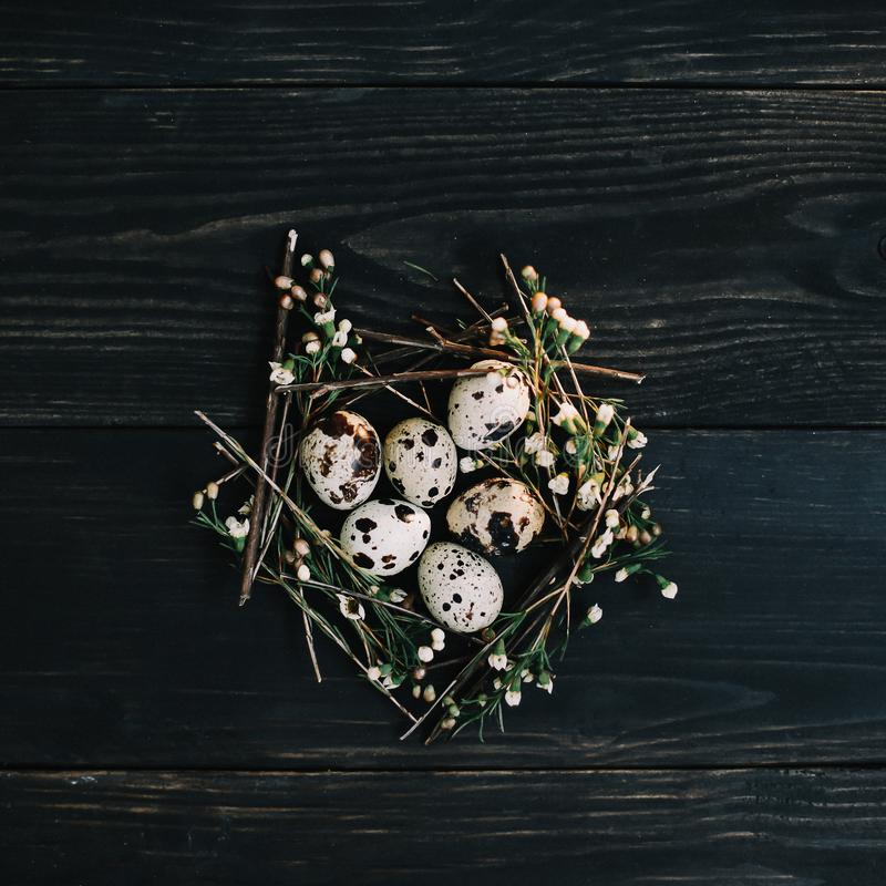 Easter eggs on wooden background. Rustic easter still life with quail eggs, dry willow branches on dark background. royalty free stock photos