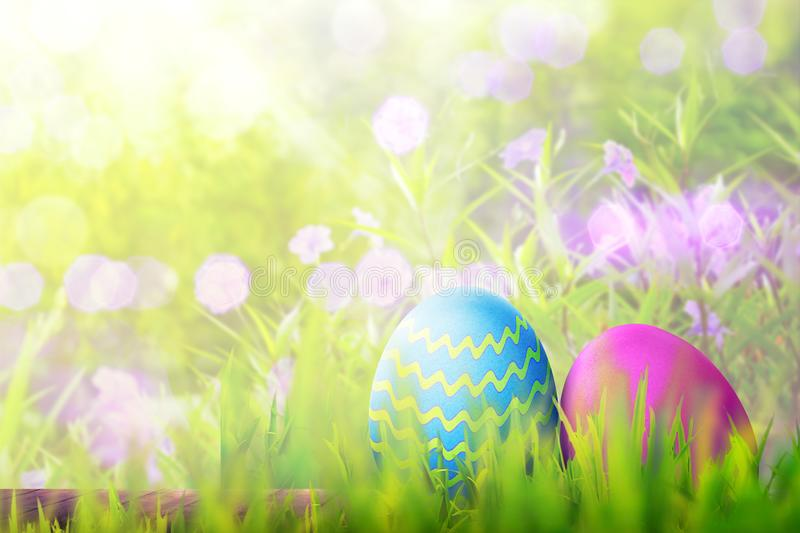 Easter eggs on wooden plank covering with green grass royalty free stock photography