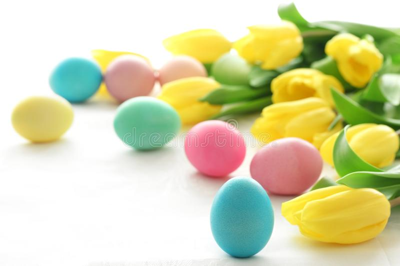 Easter eggs with yellow tulips royalty free stock photos