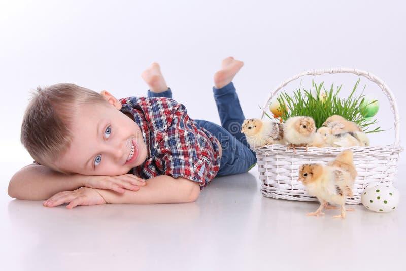 Easter engraçado imagens de stock