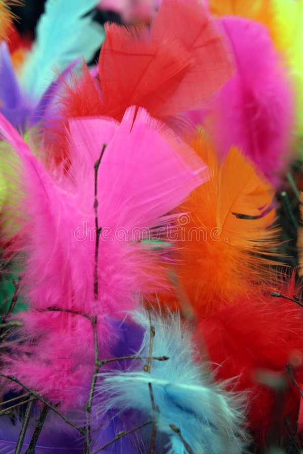 Download Easter feather tree 1 stock image. Image of decoration - 716263