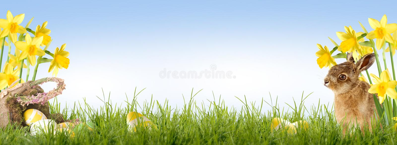 Easter feliz foto de stock royalty free