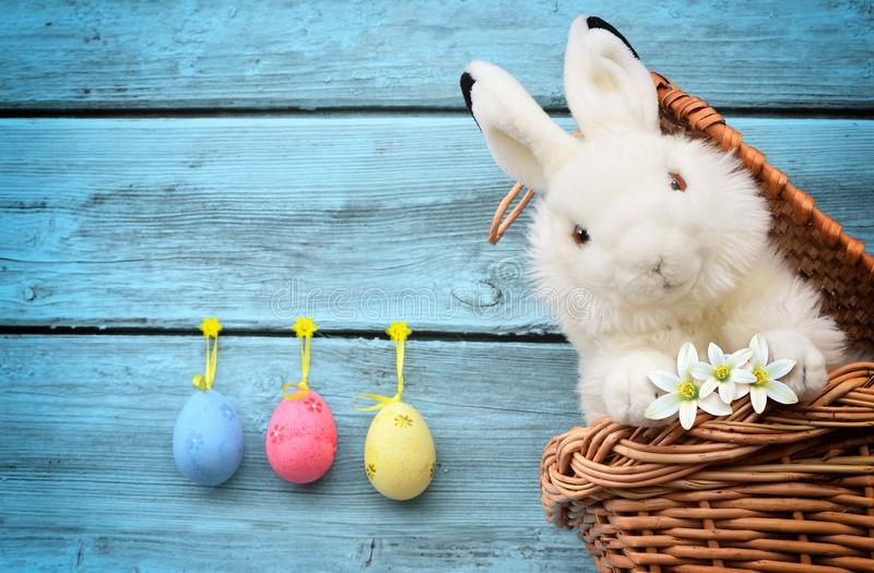 Easter funny bunny on basket and easter eggs. Easter background. Easter funny bunny on basket and easter eggs. Easter wooden background stock photo