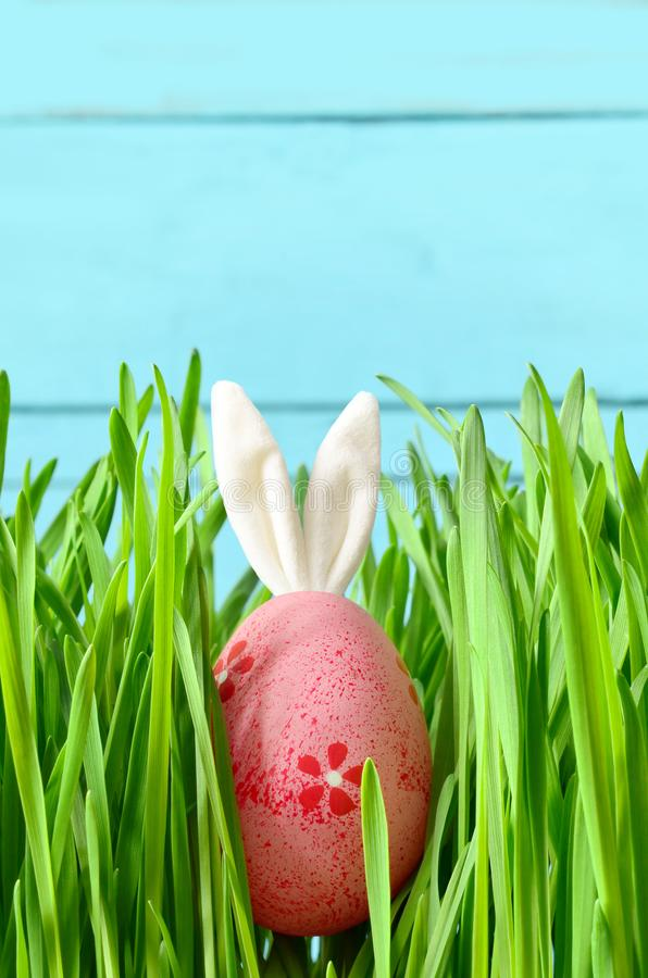 Easter funny bunny on green grass with easter egg. Easter funny bunny on green grass and easter egg. Easter background stock photos