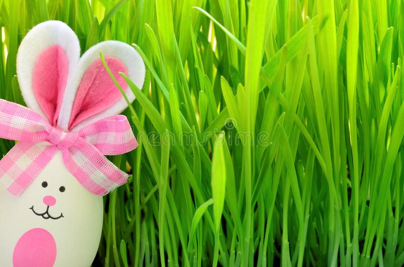Easter funny bunny on green grass with easter egg. Easter background. Easter funny bunny on green grass us easter egg. Easter background stock photos