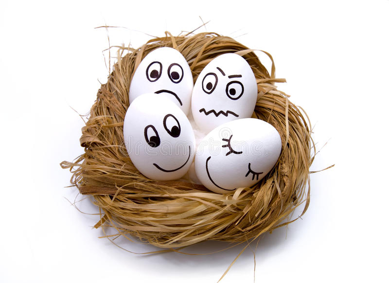 Easter funny eggs in nest stock photography