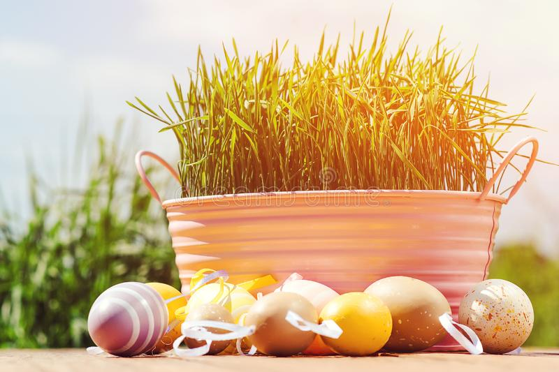 Easter greeting card. Easter eggs and basket with green grass. Easter sale. Spring Easter Holidays. Background with Easter eggs. royalty free stock photo