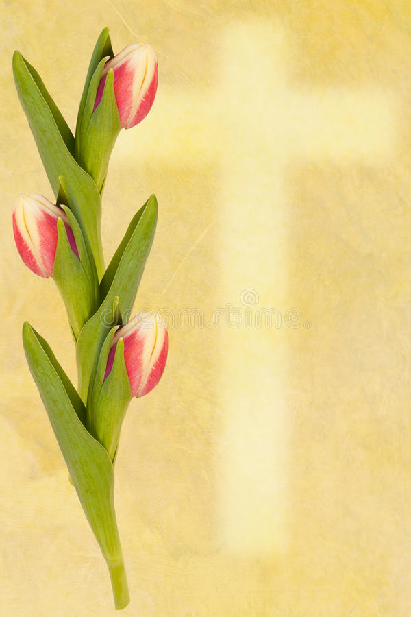 Download Easter Greetingcard Tulip And Cross Royalty Free Stock Photos - Image: 18866458