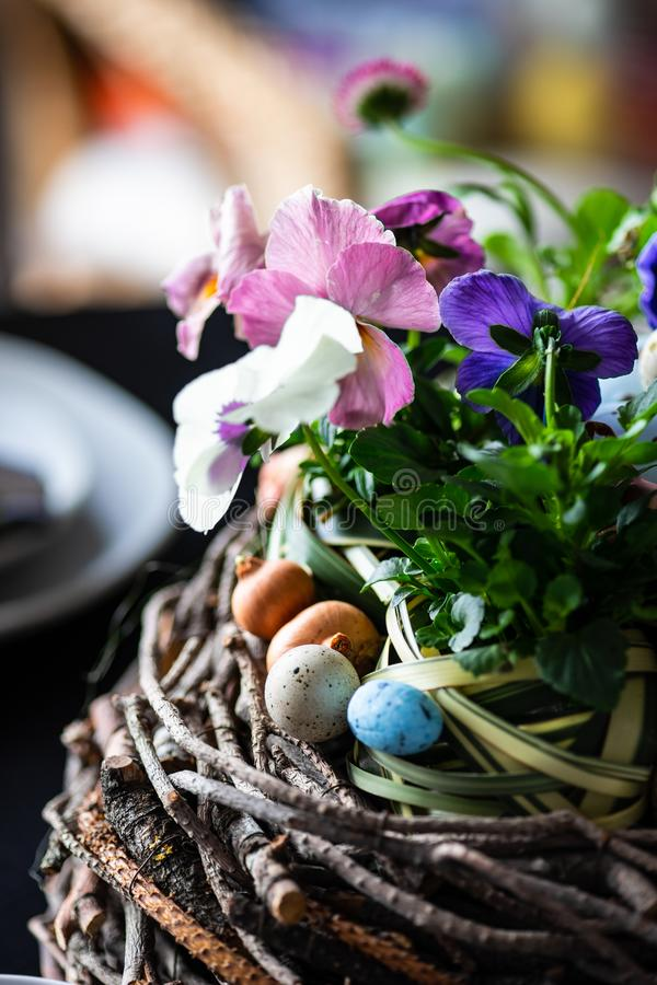 Easter holiday card concept. Easter holiday natural composition with boxwood, colored eggs and spring flowers like tricolor violas etc royalty free stock photo