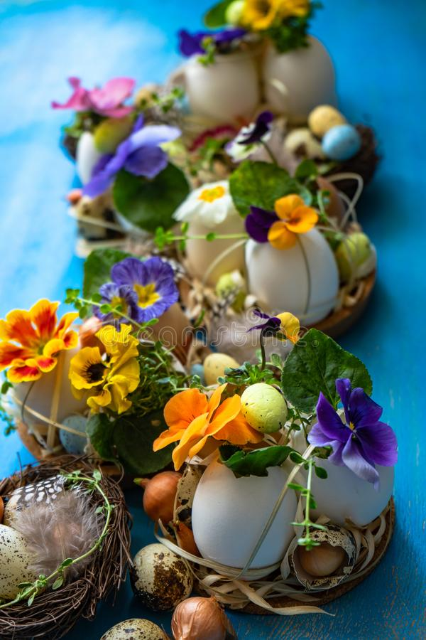 Easter holiday card concept. Easter holiday natural composition with first spring flowers like tricolor violas and primerose , colored eggs stock photography