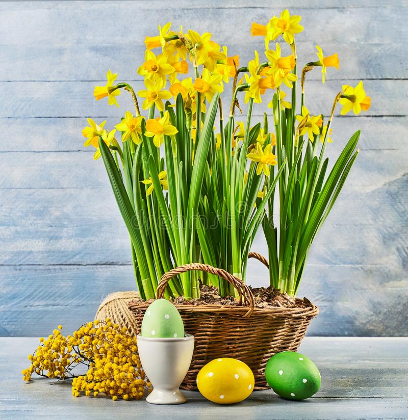 Easter holiday card with eggs yellow spring flowers royalty free stock photography
