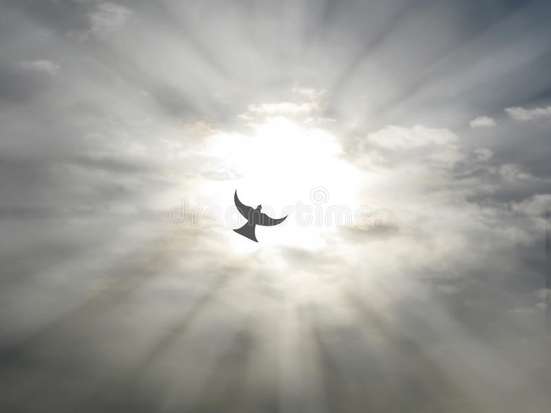 Easter holy spirit peace dove flying through open sky clouds with sun rays. Easter holy spirit peace dove flying through open sky grey clouds with sun rays stock images