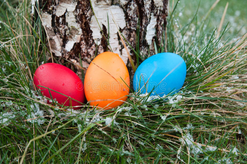Download Easter hunt stock photo. Image of nest, color, garden - 28543248