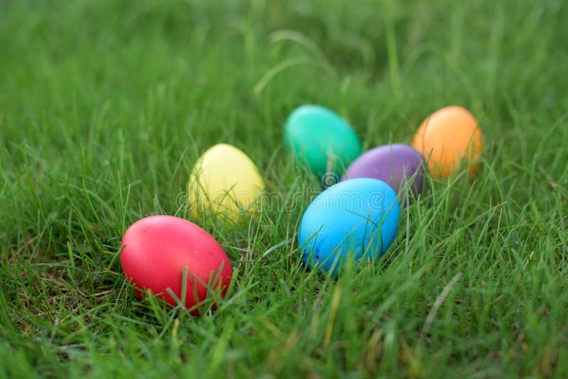 Easter hunt - colored hen eggs in a grass stock images