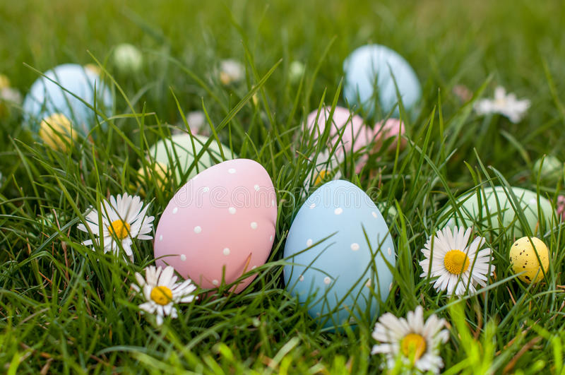 Easter Hunt stock images
